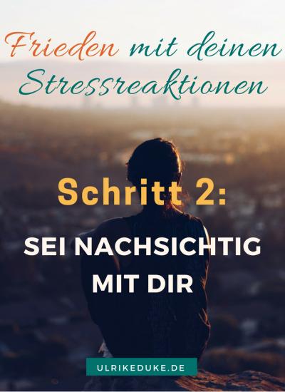 3 Schritte um mit dir und deinen Stressreaktionen Frieden zu schließen