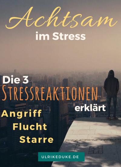 Achtsam im Stress – Teil 2: Vom Bewertungsprozess zur Stressreaktion