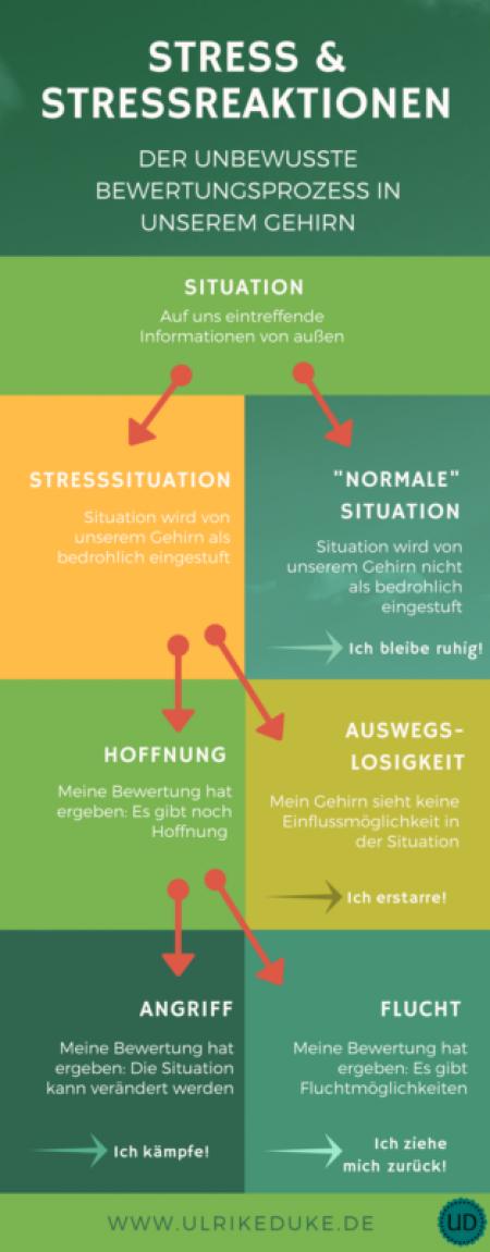 Achtsam im Stress - die häufigsten Stressreaktionen - der unbewusste Bewertungsprozess in unserem Gehirn