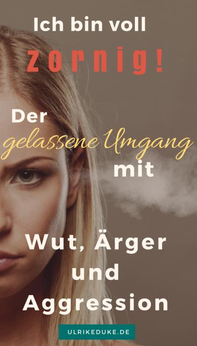 """""""Ich bin voll zornig"""" – Der gelassene Umgang mit Wut, Ärger und Aggression"""