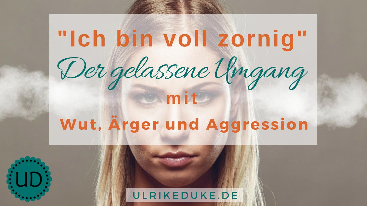 Diplom-Psychologin-Psychologe-74821-Mosbach-Wutanfall-Wutanfälle-Aggressionsprobleme-Anti-Aggressionstraining-Aggressionsbewältigung-Zorn-Ärger-B-1