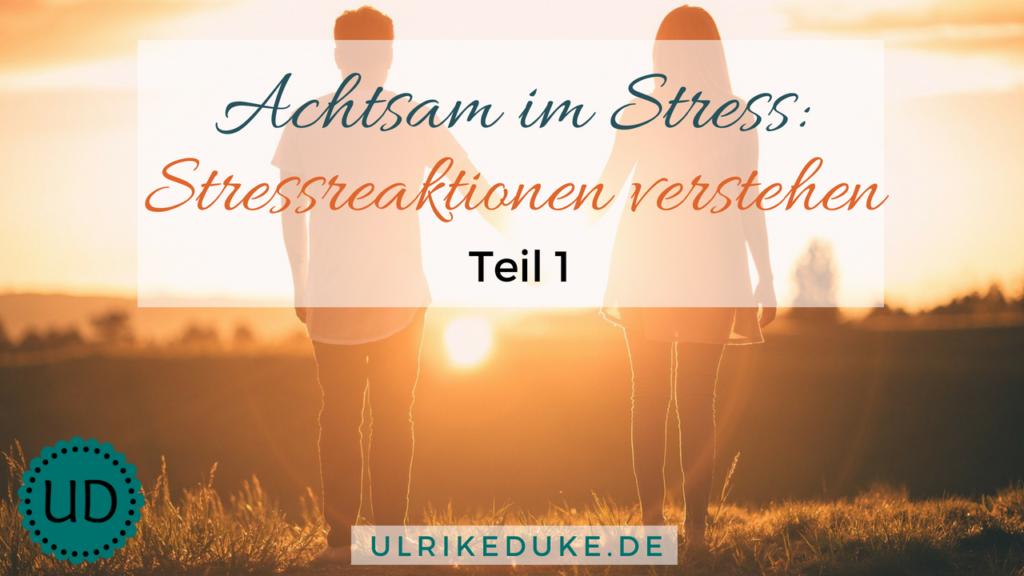 Diplom-Psychologin-Psychologe-74821-Mosbach-Stressreaktion-Stressreaktion-im-Körper-Stress-Stress-less-Achtsamkeit-Achtsamkeitsübungen-Achtsamkeitsübung-B-1