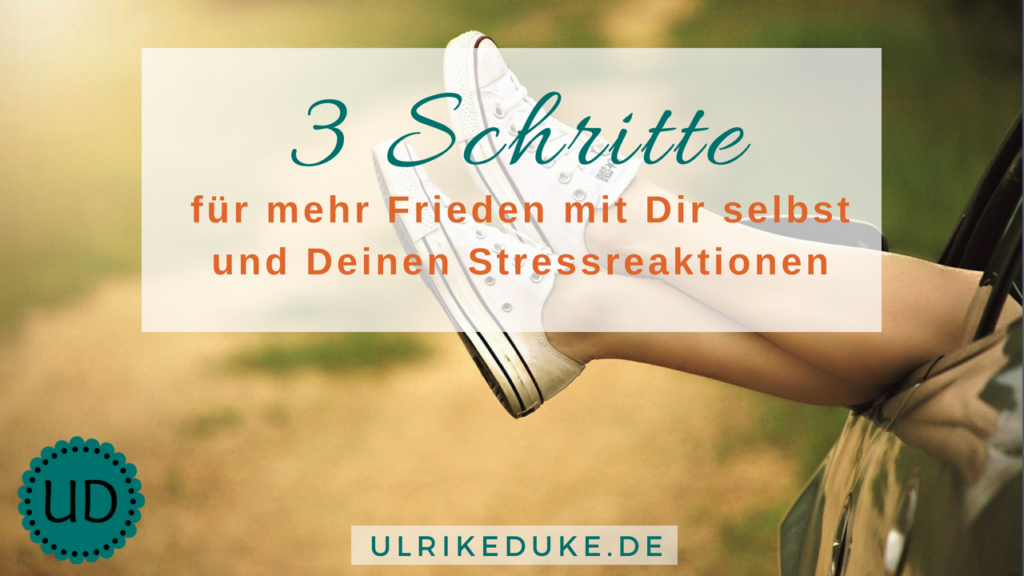 Diplom-Psychologin-Psychologe-74821-Mosbach-Fight-or-Flight-Selbstwahrnehmung-Stressreaktion-Stressreaktion-im-Körper-Friede-Stress-Stress-less-Stressabbau-Lazarus-B-1