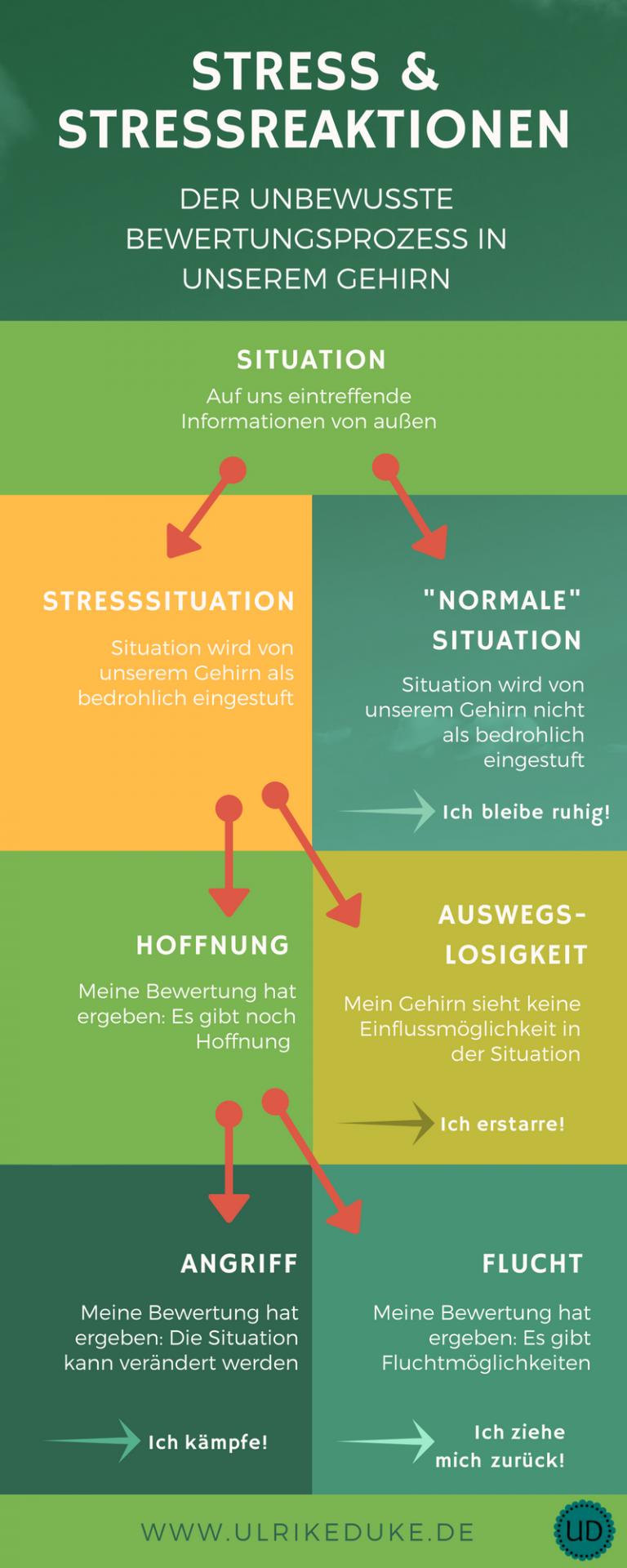 Diplom-Psychologin-Psychologe-74821-Mosbach-Stressmanagement-Lazarus-Stressmodell-Stressbewältigung-Stressabbau-Stress-Stress-less-Achtsamkeit-Achtsamkeitsübung-Achtsamkeitsmeditation-B-4