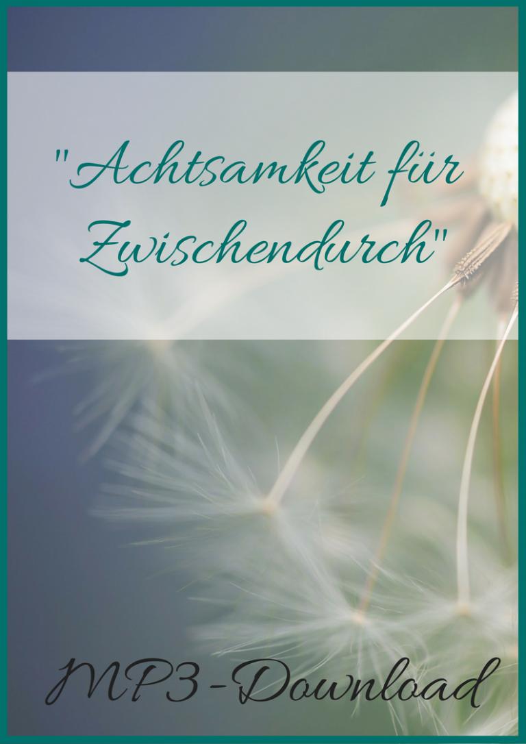 _Achtsamkeit für Zwischendurch_ Deine Atemmeditation - gratis download - ressourcenbibliothek