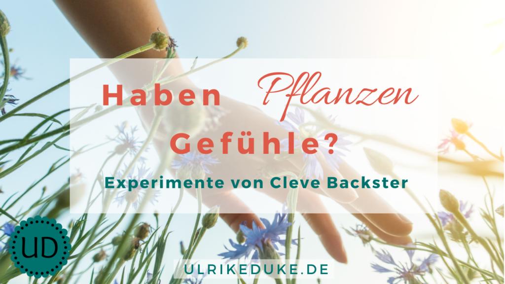 Diplom-Psychologin-Psychologe-74821-Mosbach-Cleve Backster-haben-Pflanzen-Gefühle-die-Intelligenz-der-Pflanzen-pflanzen-Gefühle-B-1