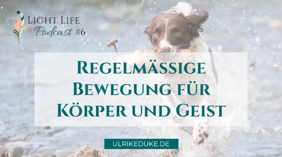 Diplom-Psychologin-Psychologe-74821-Mosbach-Bewegung-Bewegungstraining-Bewegungsmangel-Bewegungsgeschichten-Bewegungsangebote-Gesundheit-für-Seele-Körper-und-Geist-gesunder-Geist-gesunder-Körper-P-1