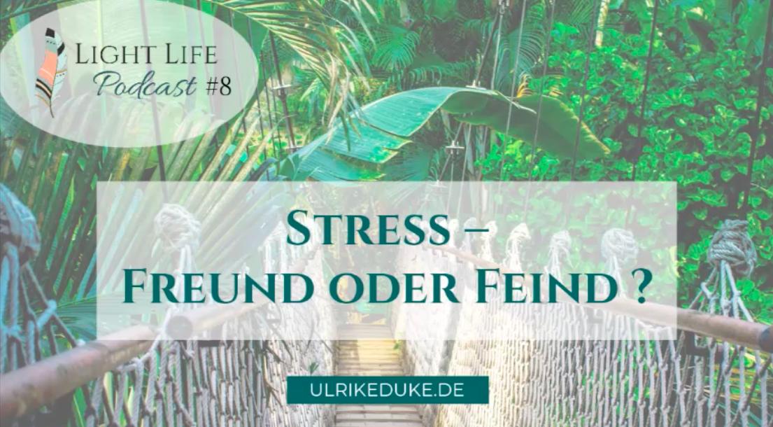 iplom-Psychologin-Psychologe-74821-Mosbach-Stress-less-abbauen-Stressbälle-Stress-out-Stressbewältigung-Stressabbau-Stressmanagement-Anti-Stress-reduzieren,-Stresssymptome-P-1