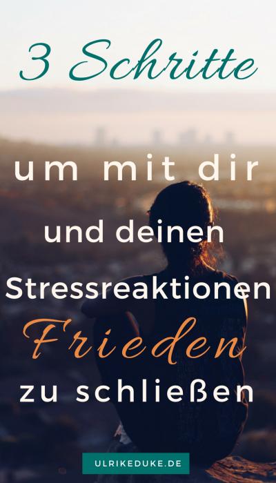 Diplom-Psychologin-Psychologe-74821-Mosbach-Fight-or-Flight-Selbstwahrnehmung-Stressreaktion-Stressreaktion-im-Körper-Friede-Stress-Stress-less-Stressabbau-Lazarus-B-2