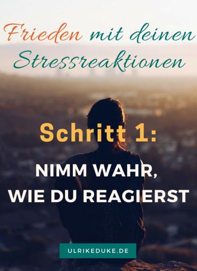Diplom-Psychologin-Psychologe-74821-Mosbach-Fight-or-Flight-Selbstwahrnehmung-Stressreaktion-Stressreaktion-im-Körper-Friede-Stress-Stress-less-Stressabbau-Lazarus-B-3