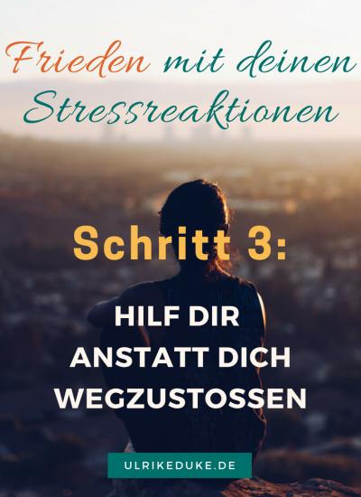 Diplom-Psychologin-Psychologe-74821-Mosbach-Fight-or-Flight-Selbstwahrnehmung-Stressreaktion-Stressreaktion-im-Körper-Friede-Stress-Stress-less-Stressabbau-Lazarus-B-5