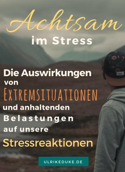 Diplom-Psychologin-Psychologe-74821-Mosbach-Stressreaktion-Stressreaktion-im-Körper-Stress-Stress-less-Achtsamkeit-Achtsamkeitsübungen-Achtsamkeitsübung-B-4