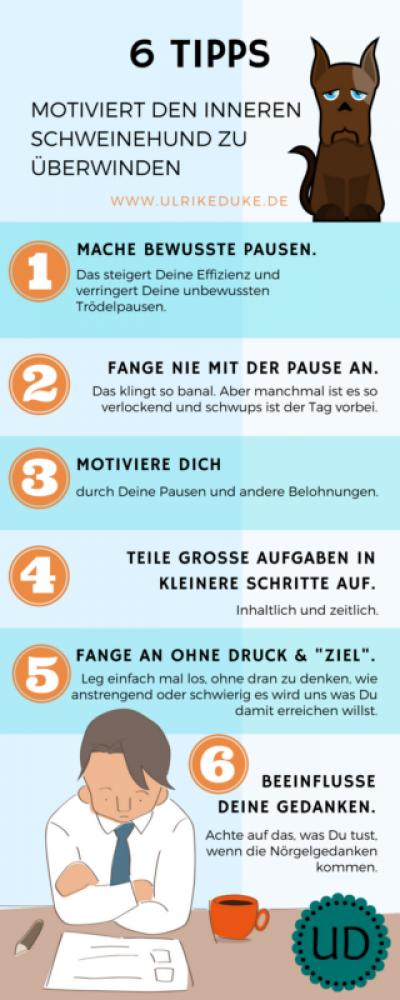 Infografik_Prokrastinieren - 5 Tipps motiviert den inneren Schweinehund zu überwinden