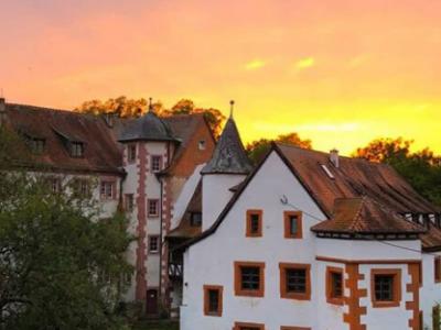 Schlosspraxis Mosbach-Lohrbach Ulrike Duke Psychologe Psychologin Psychotherapie